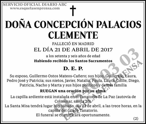 Concepción Palacios Clemente